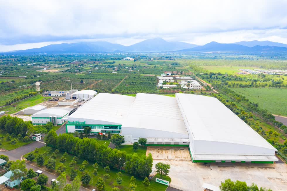 Trang trại Bò sữa NutiMilk công bố thành quả sữa tươi chất lượng cao