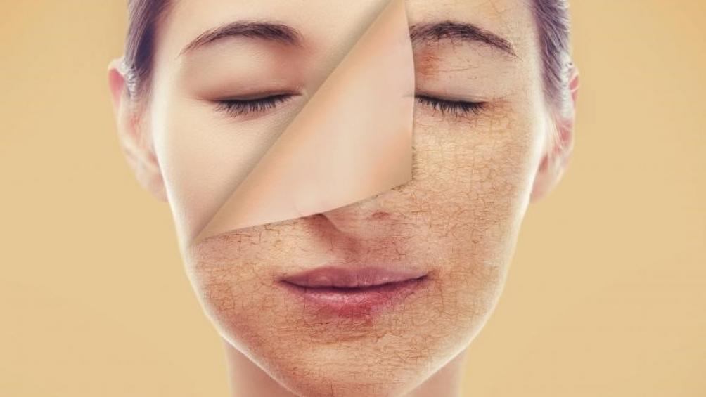 Nguyên liệu hoàn hảo cho nhu cầu chống lão hóa của phụ nữ