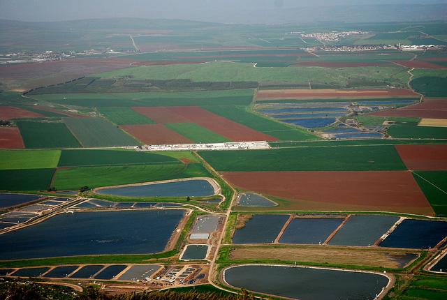 8 phương pháp biến sa mạc thành nơi trồng rau nuôi cá của Israel