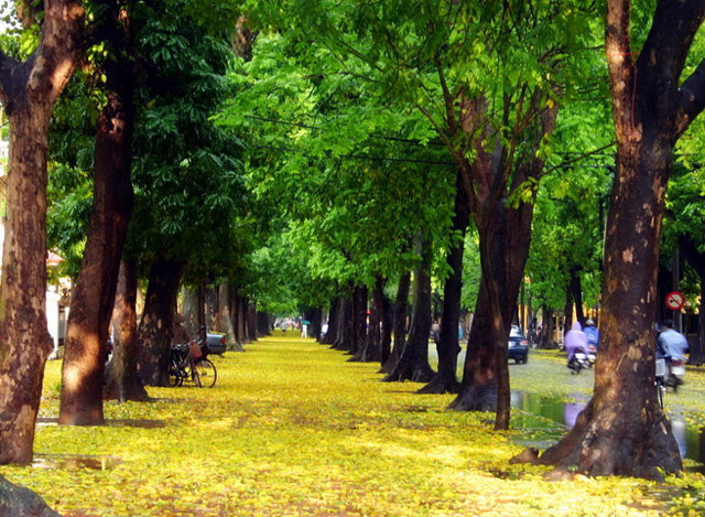 Những điểm đến lý tưởng để du lịch Hà Nội bằng xe đạp