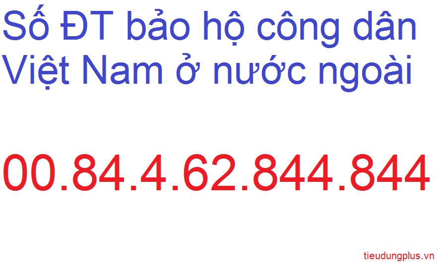 Số điện thoại bảo hộ công dân Việt Nam ở nước ngoài khi đi du lịch gặp sự cố