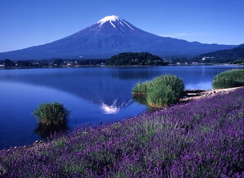 Cùng đến Hokkaido để tận hưởng vẻ đep tuyệt diệu mà thiên nhiên ban tặng