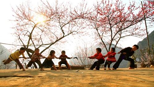 Những phong tục truyền thống bạn nên làm trong tiết Thanh Minh