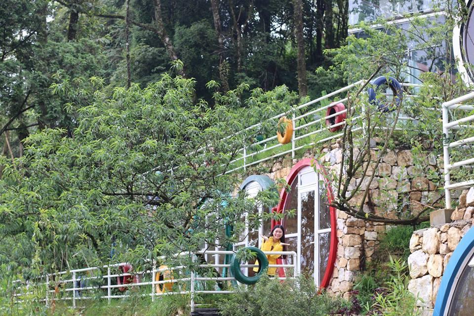 Ngoài dịch vụ lưu trú Tubotelsapa còn có rất nhiều các dịch vụ lưu trú khác