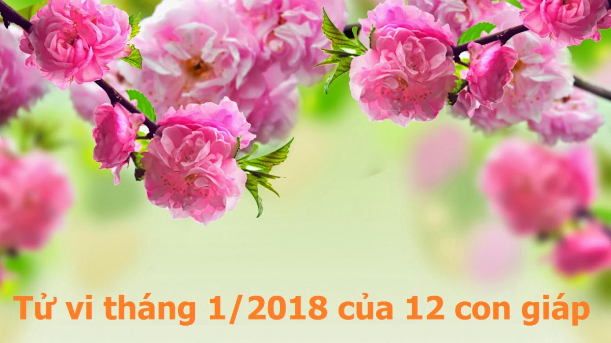 Tử vi tháng 1/2018 của 12 con giáp