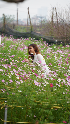 Từ đó, Chúa lấy đi hương thơm của hoa nhưng Chúa bù lại cho hoa một vẻ đẹp tuyệt vời.