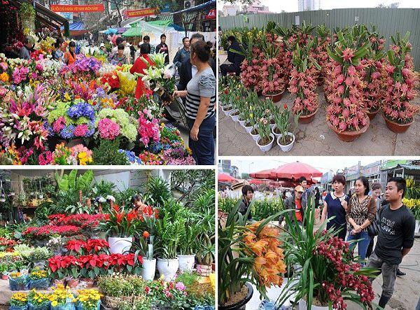 Chợ hoa truyền thống trên đường Lạc Long Quân