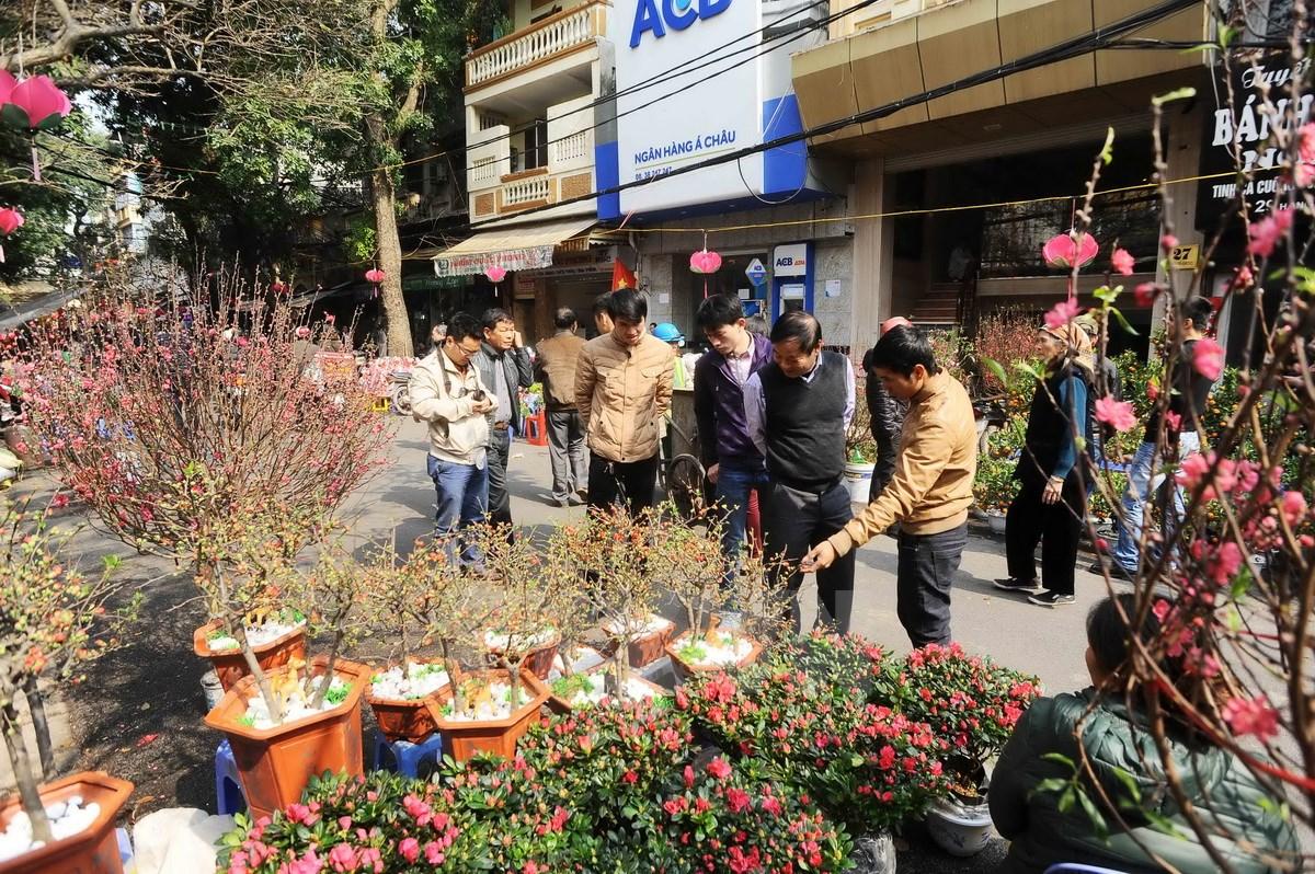 Chợ hoa truyền thống trên Hàng Lược