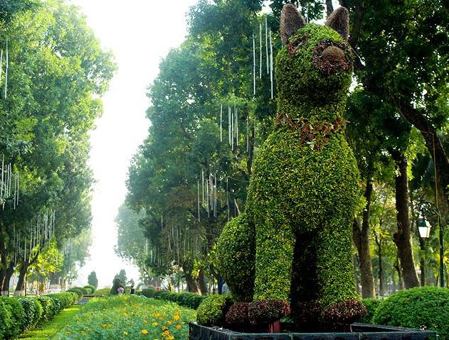 12 con giáp tại công viên Thống Nhất - con chó
