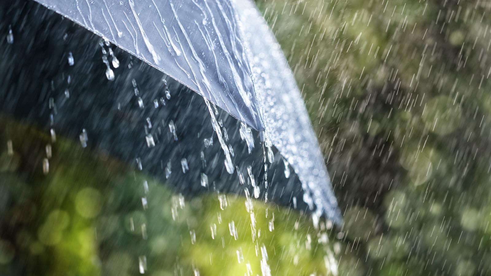 Kết quả hình ảnh cho rain