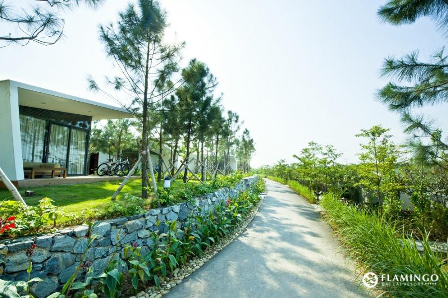 Địa điểm du lịch gần Hà Nội 2 ngày 1 đêm không thể bỏ qua dịp 2/9