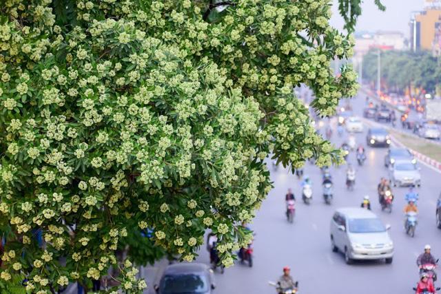 Dự báo thời tiết ngày 30/8/2019: Hà Nội nhiều mây, có mưa rào và rải rác có dông