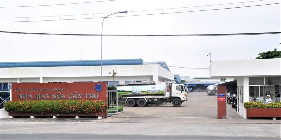 Vinamilk đầu tư 4.000 tỷ đồng xây trang trại tại Cần Thơ