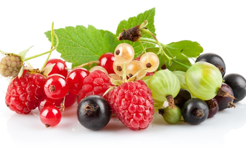 Tránh xa các loại hoa quả dễ gây ngộ độc cho bé