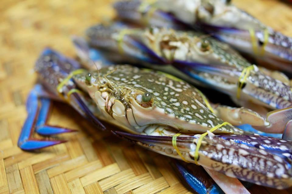 Mẹo nhận biết hải sản tươi, ngon, sạch dễ dàng, chính xác