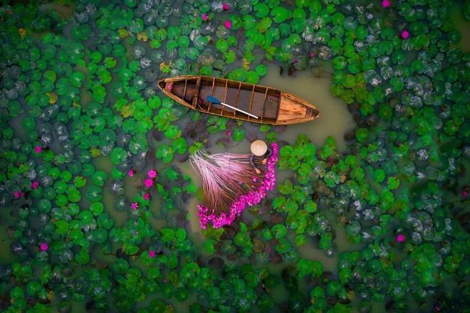 Đồng bằng Sông Cửu Long – Cú chuyển mình hoàn hảo từ chiến tranh