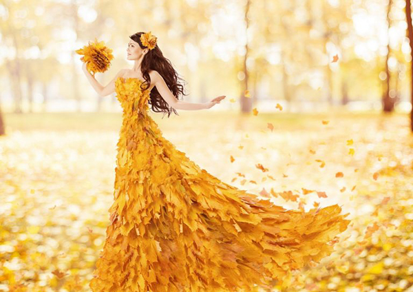 Gam màu mùa thu: Khi sắc vàng không còn dành cho sự u sầu