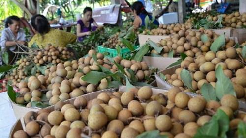 Chỉ có 5 loại trái cây tươi của Việt Nam xuất khẩu vào Mỹ