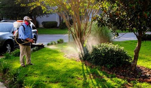 Cảnh giác với hóa chất diệt côn trùng giả