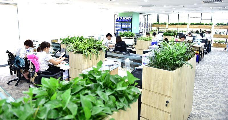 Nhân tố xanh tạo nên sự khác biệt cho cho cao ốc văn phòng