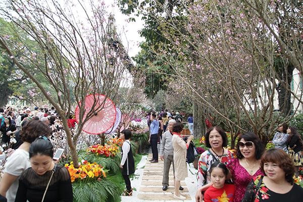 Chen chân tham dự lễ hội hoa anh đào 2018