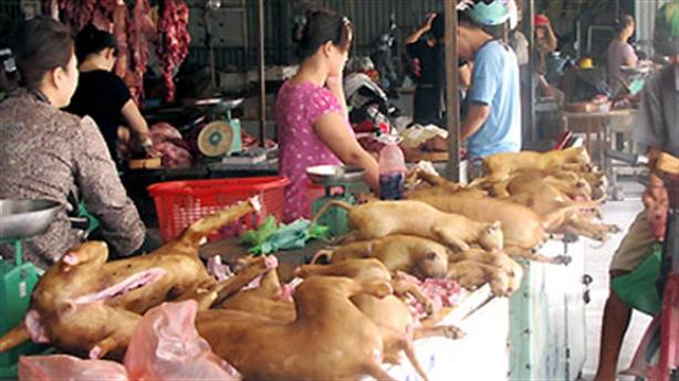 Hà Nội dự kiến cấm bán thịt chó từ năm 2021