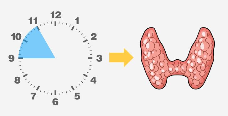 Tại sao bạn thức dậy vào cùng một thời điểm mỗi đêm?