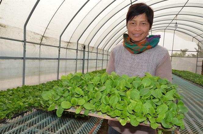 6 tháng đầu năm 2018: Hà Nội không xảy ra sự cố mất an toàn thực phẩm