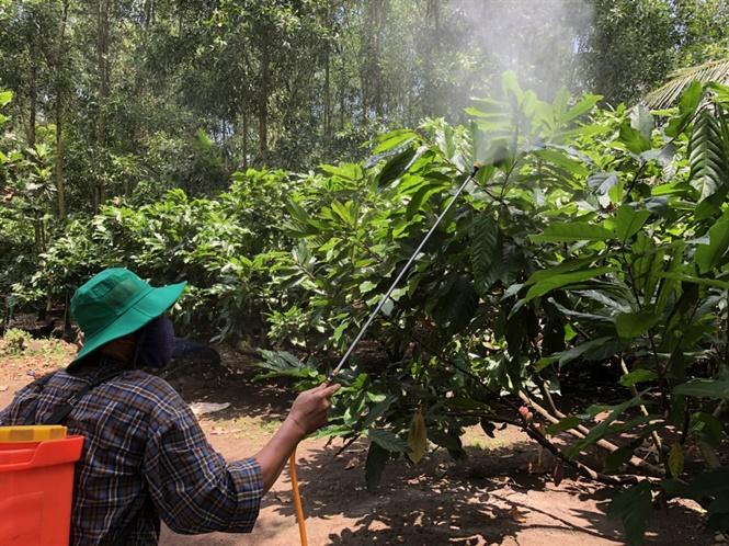 Báo động ô nhiễm làng quê, ngộp thở vì mùi phân, thuốc BVTV