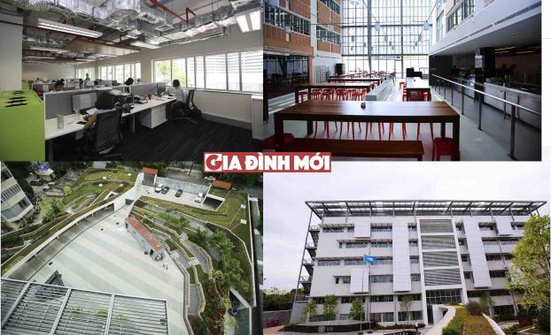 Bên trong ngôi nhà Xanh LHQ tại Việt Nam được giải thưởng công trình xanh thế giới 0