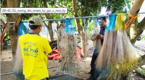 Cá dính đầy lưới mùa lũ đẹp, nông dân gỡ mỏi tay