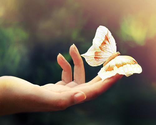 Cuộc sống sẽ trở nên nhẹ nhàng hơn khi ta nhìn mọi thứ đơn giản