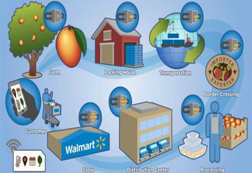 Walmart đề nghị các nông trại quản lý nguồn gốc rau củ bằng công nghệ blockchain