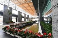 Người thiết kế sân bay Vân Đồn nói gì về công trình biểu tượng của Quảng Ninh?