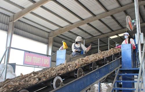 Công suất chế biến chỉ đạt 5-10% sản lượng nông sản sản xuất ra