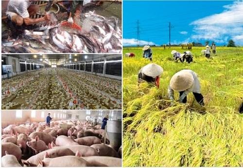 10 thành tựu nổi bật của ngành nông nghiệp Việt Nam năm 2018