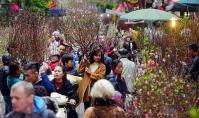Hà Nội: Tổ chức 64 điểm chợ hoa Xuân phục vụ Tết Nguyên đán Kỷ Hợi