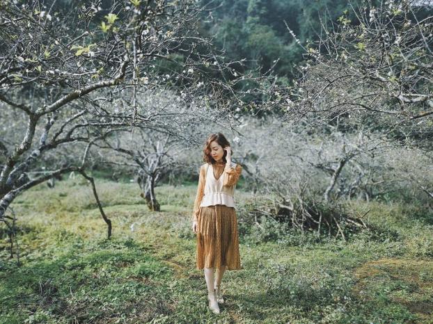 Ngắm hoa mận Mộc Châu những ngày cuối năm đẹp bình yên trong bộ ảnh của cô gái trẻ 1