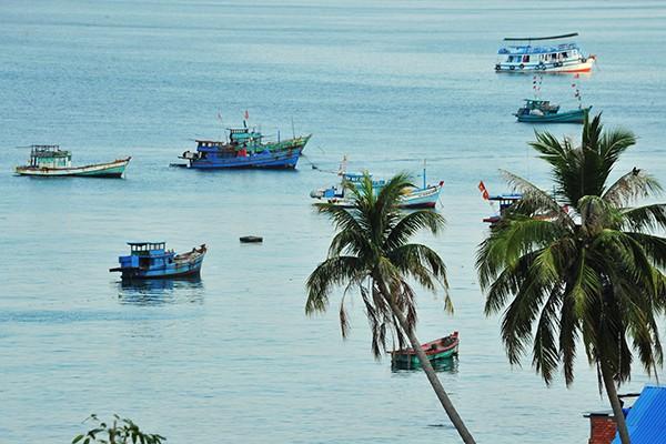 Những chiếc tàu neo đậu trong một khung cảnh bình yên.