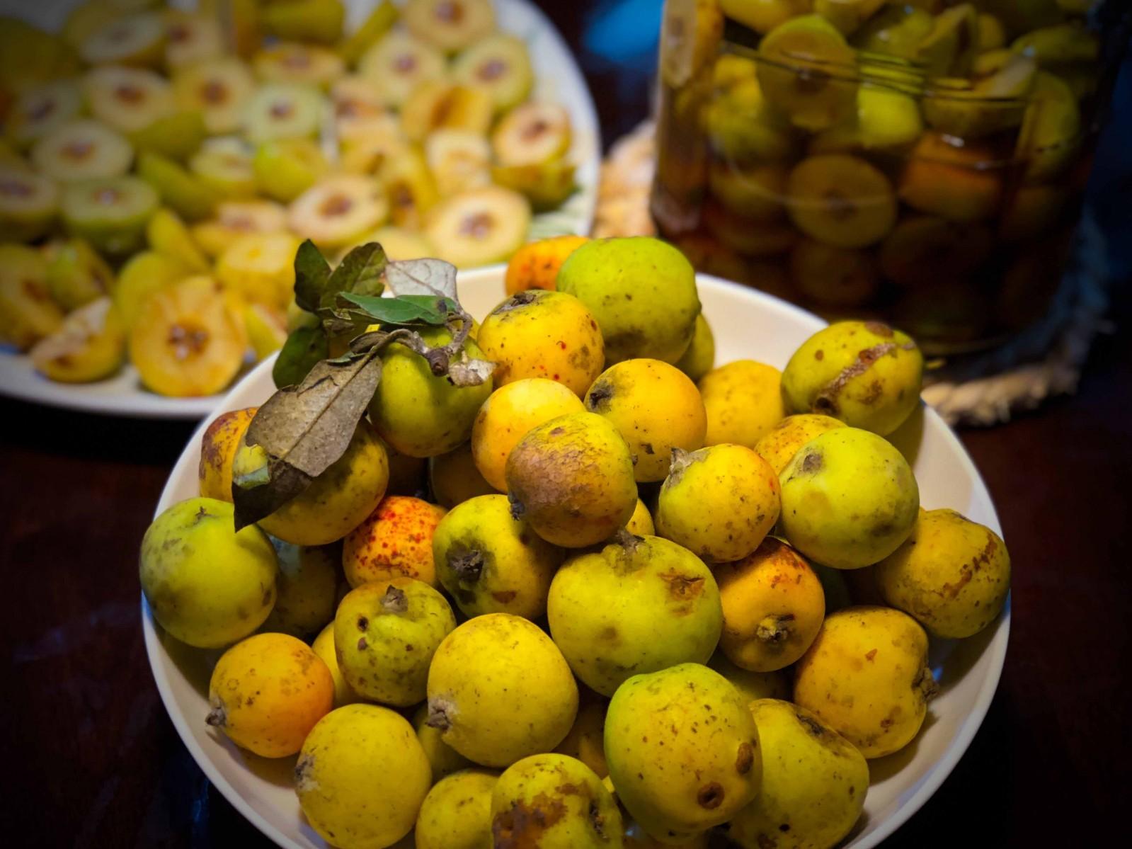 Những trái táo mèo vàng ươm, mang về rửa sạch, ngâm cùng với rượu nếp sẽ cho ra thứ rượu táo mèo thơm dịu, càng uống càng ngọt càng say.