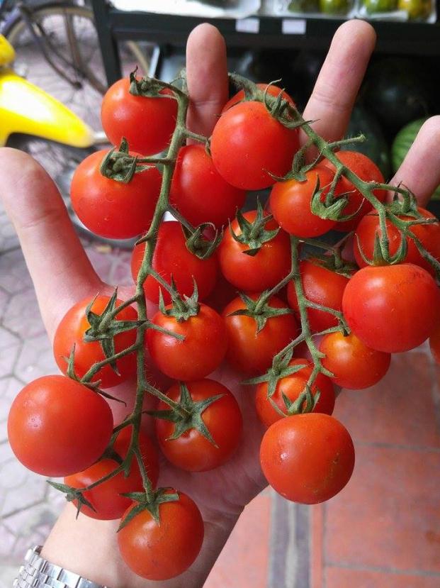6 loại trái cây càng ăn càng béo, nguy hiểm hơn thịt, cơm chị em cần tránh xa 7