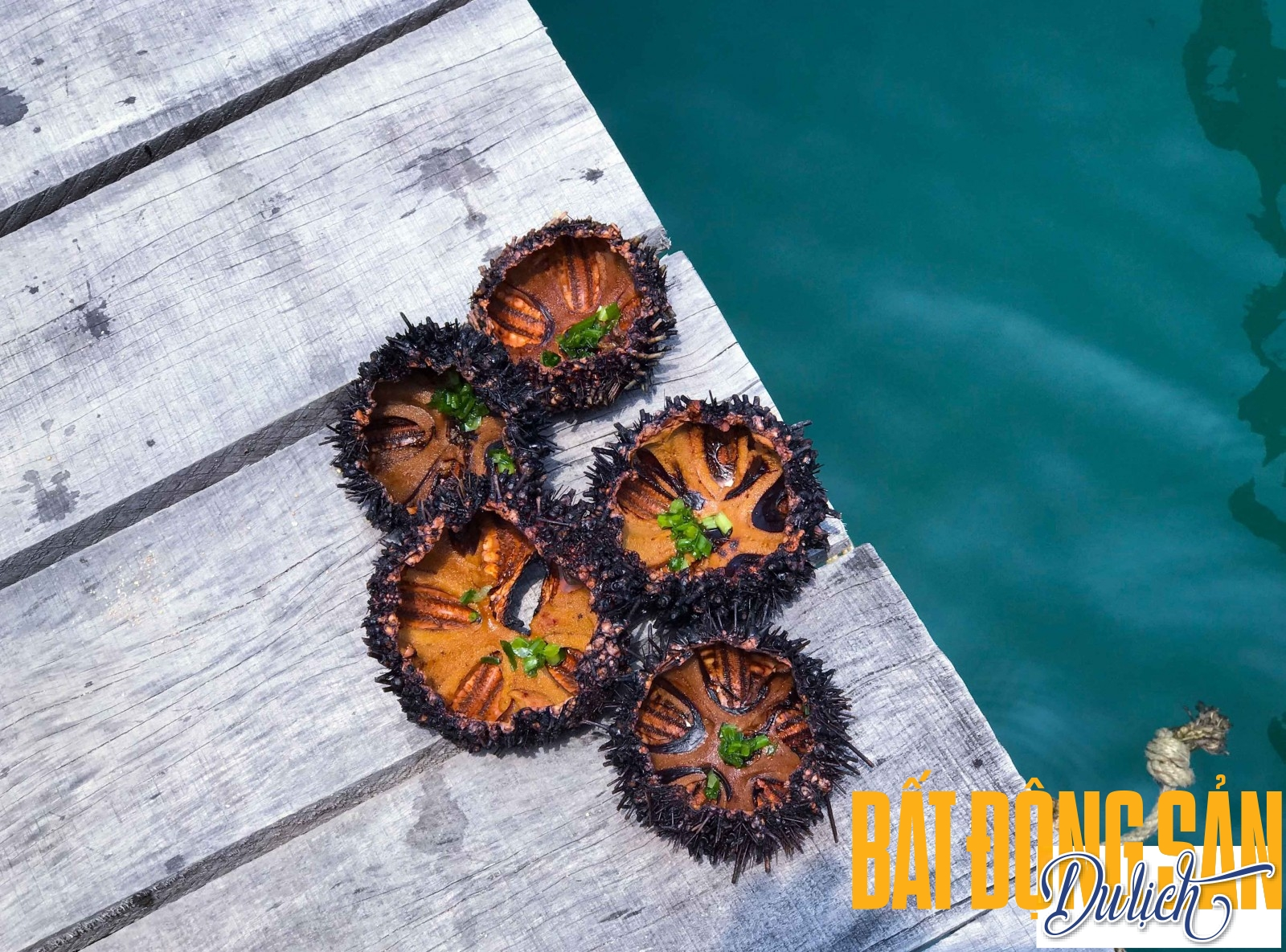 Không chỉ những cảnh quan thiên nhiên đẹp, vịnh Vĩnh Hy còn hấp dẫn bởi nhiều loài hải sản tươi ngon. Một trong những món đặc trưng của hải sản ở Vĩnh Hy là nhum nướng mỡ hành.