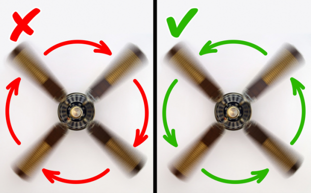 Nắng nóng đỉnh điểm, lưu ngay 11 bí kíp chống nóng ngay cả khi không có điều hòa 1