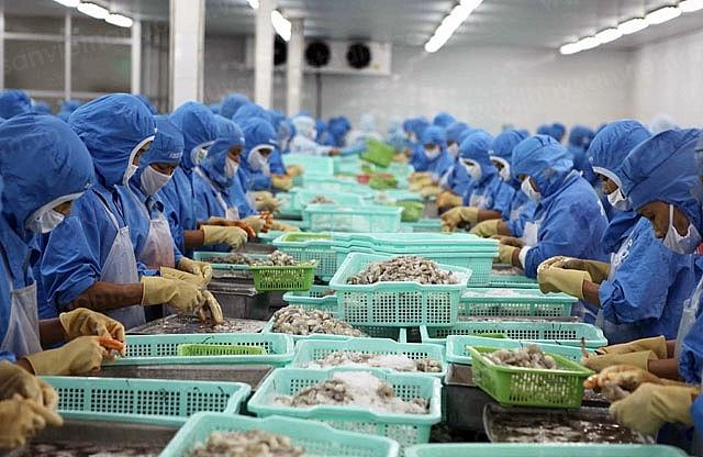Chile – Thị trường mới nổi cho xuất khẩu tôm Việt Nam