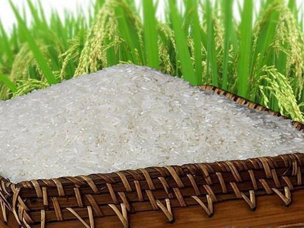 Giá gạo của Ấn Độ và Việt Nam giảm do nhu cầu