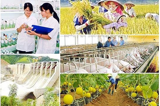 Nỗ lực hoàn thành các chương trình mục tiêu quốc gia