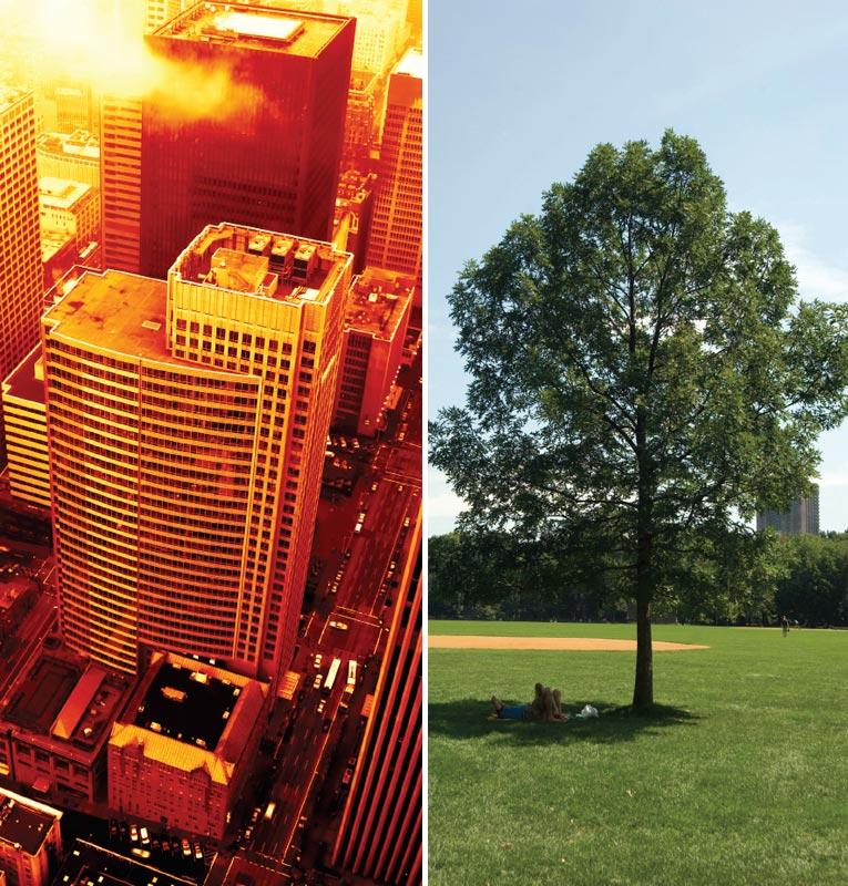 """""""Ốc đảo nhiệt"""" đô thị - hệ quả của đô thị hoá không bền vững"""