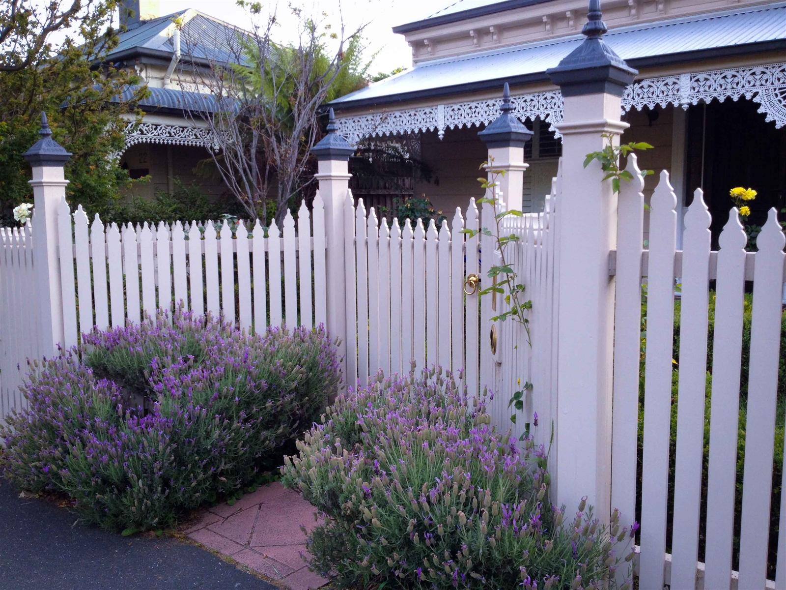 Ngang qua những hàng rào gỗ Melbourne
