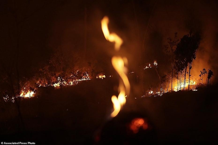 Xót xa trước sự tàn phá của thảm họa cháy rừng Amazon