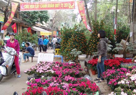 Chợ Hoa Hàng Lược - điểm đến không thể thiếu của người dân thủ đô những dịp cận Tết